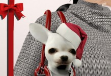 Pet Carrier Christmas Gift by TuTy's - Teleport Hub - teleporthub.com