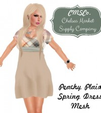 Peachy Plaid Tartan Spring Dress by CMSCO - Teleport Hub - teleporthub.com