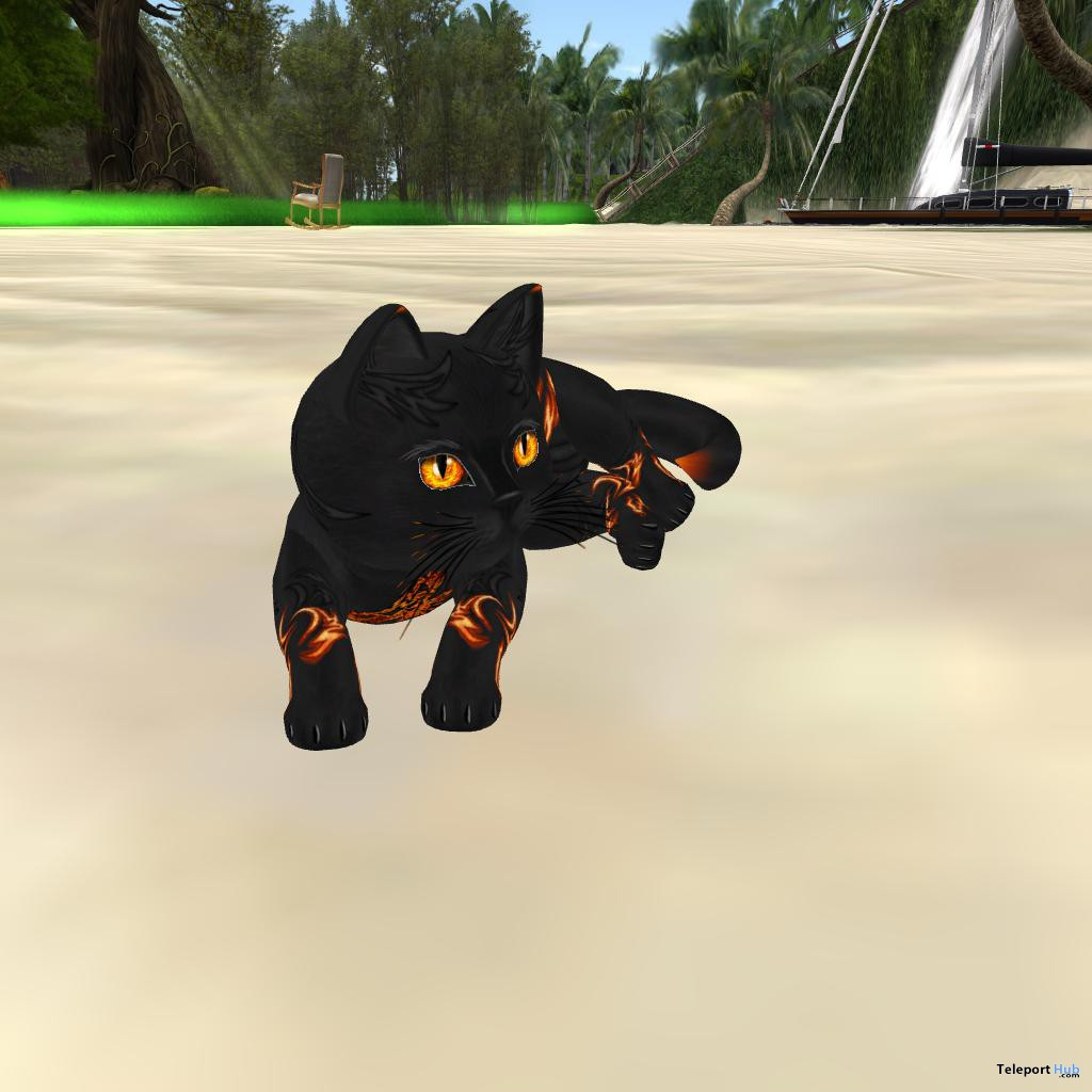 Firestorm 3rd Birthday Cat Gift Plus A Random Cat Gift by KittyCats - Teleport Hub - teleporthub.com