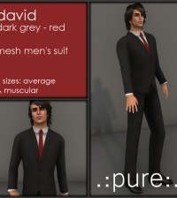 David Dark Grey Men's Suit 10L Promo by pure - Teleport Hub - teleporthub.com
