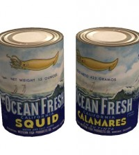 Canned Flying Squid by Photon Pink - Teleport Hub - teleporthub.com