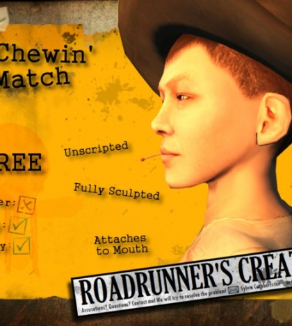 Chewing Match Stick by Roadrunner's Creations - Teleport Hub - teleporthub.com