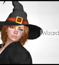 Wizard Hat For Women Halloween Gift by ARGRACE - Teleport Hub - teleporthub.com