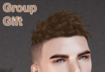 Taylor Hair For Men with HUD Group Gift by bade - Teleport Hub - teleporthub.com
