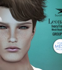 Leonardo Ivory Freckles TMP Head Applier Group Gift by Swallow - Teleport Hub - teleporthub.com
