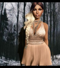 Chic Mademoiselle Dress December 2015 Group Gift by AMERICAN BAZAAR - Teleport Hub - teleporthub.com