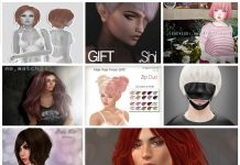 Tons of Hair and Hair Accessories Gift at Hair Fair 2016 - Teleport Hub - teleporthub.com