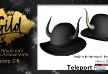 Wide Brimmed-Horns Hat Group Gift by Gild - Teleport Hub - teleporthub.com