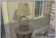 Bird Cage Lamp Group Gift by Zen Creations - Teleport Hub - teleporthub.com