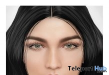 Belle Skin Catwa Head Applier Group Gift by New Faces - Teleport Hub - teleporthub.com