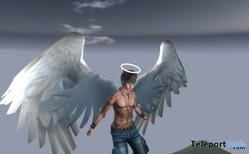 Angel Wings With Halo Gift by T.J Store - Teleport Hub - teleporthub.com