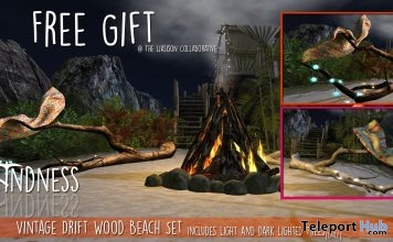 Vintage Driftwood Beach Set The Liaison Collaborative Event June 2017 Gift by Unkindness - Teleport Hub - teleporthub.com