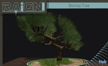 Bonsai Tree 1L Yin Yang Event Promo Gift by RAIGN - Teleport Hub - teleporthub.com