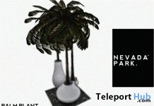 Palm Plant Decor Group Gift by NEVADA PARK - Teleport Hub - teleporthub.com