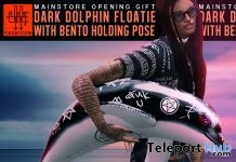 Dark Dolphin Floatie Group Gift by FAKEICON - Teleport Hub - teleporthub.com