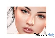 Alena Skin & Brows Catwa Head Appliers by Atelier Pepe - Teleport Hub - teleporthub.com