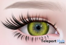 Circle Lens Yellow Gift by ANATOMY - Teleport Hub - teleporthub.com