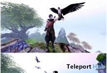Doves and Falcons With Pose Gift by ssbb Poses - Teleport Hub - teleporthub.com