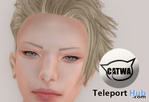 Eyebrows For Male CATWA Heads Group Gift by bluebird - Teleport Hub - teleporthub.com