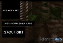 Mid-Century SoHa Plant December 2017 Group Gift by NEVADA PARK - Teleport Hub - teleporthub.com