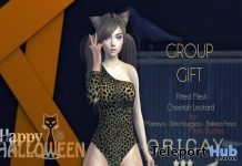 Cheetah Leotard Bodysuit Group Gift by Oricay - Teleport Hub - teleporthub.com