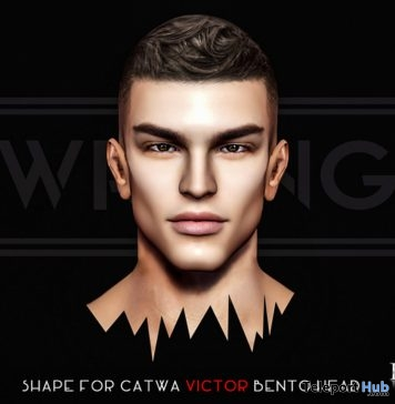 Diego Male Shape For Catwa Victor Bento Head May 2018 Group Gift by WRONG - Teleport Hub - teleporthub.com