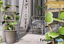 Lucky Heart Plant May 2018 Group Gift by hive - Teleport Hub - teleporthub.com