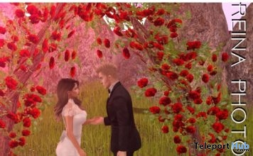 Wedding Pose WED001 With Mesh Scene June 2018 Gift by Reina Photography - Teleport Hub - teleporthub.com
