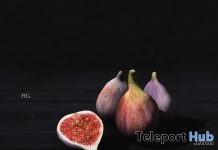 Figs August 2018 Group Gift by 8f8 - Teleport Hub - teleporthub.com