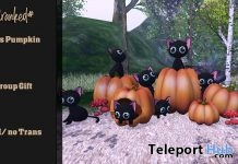 Cats Pumpkin October 2018 Group Gift by #CRANKED# - Teleport Hub - teleporthub.com