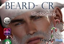Beard CR Med Style December 2018 Group Gift by REBIRTH - Teleport Hub - teleporthub.com