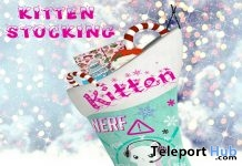 Kitten Stocking December 2018 Gift by Star Sugar - Teleport Hub - teleporthub.com