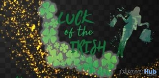 Luck of The Irish Fair 2019 - Teleport Hub - teleporthub.com