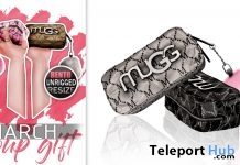 Coin Purse March 2019 Group Gift by Mug - Teleport Hub - teleporthub.com