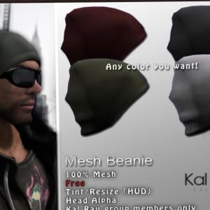 Mesh Beanie Group Gift by Kal Rau - Teleport Hub - teleporthub.com