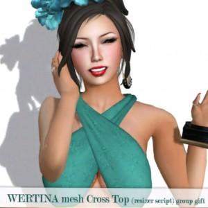 Mesh Cross Top Group Gift by WERTINA - Teleport Hub - teleporthub.com