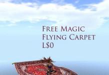 Brache's Magic Carpet by John Dee's Emporium - Teleport Hub - teleporthub.com