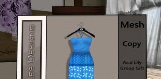 Blue Dress Group Gift by Acid Lily - Telepport Hub - teleporthub.com