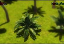 Free Mesh Palm tree No3 LOD by Pilios - Teleport Hub - teleporthub.com