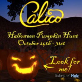 Calico Halloween Hunt - Teleport Hub - teleporthub.com