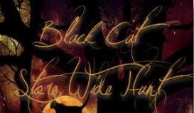 Black Cat Store Wide Hunt - Teleport Hub - teleporthub.com