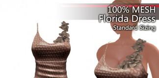 Florida Dress AH3 1L Promo Gift by Cambridge House - Teleport Hub - teleporthub.com