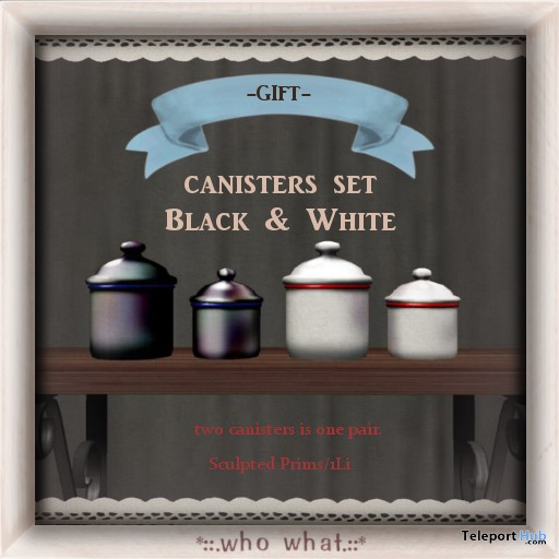 Enamel Canisters by who what