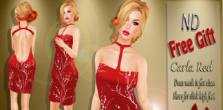 Carla Red Dress Group Gift by NALA Design - Teleport Hub - teleporthub.com