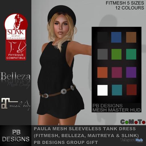 Paula Sleeveless Tank Dress Group Gift by PB Designs - Teleport Hub - teleporthub.com