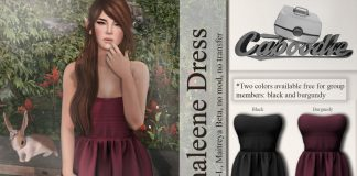 Shaleene Dress Black and Burgundy Group Gift by Caboodle - Teleport Hub - teleporthub.com