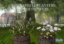 Barrell Planter With Flowers Group Gift by Shutter Field - Teleport Hub - teleporthub.com