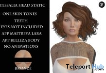 Tessalia Mesh Head Static Bronze Tone Group Gift by Z Black - Teleport Hub - teleporthub.com