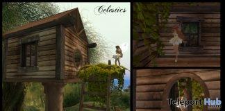 Sparrow's Birdhouse For Petites Promo by Celestics - Teleport Hub - teleporthub.com