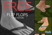 Flip Flop For Signature Feet Gift by Dossier - Teleport Hub - teleporthub.com